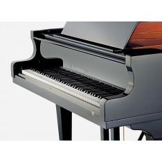 Eduard Seiler 186 cantus - Piano 1/4 de queue