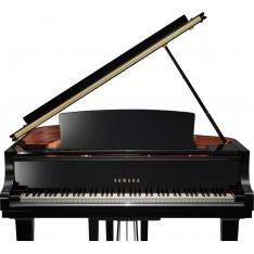 Piano Yamaha C1X - Piano 1/4 de queue acoustique