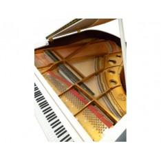 piano 1/4 de queue Wilh Steinberg P165