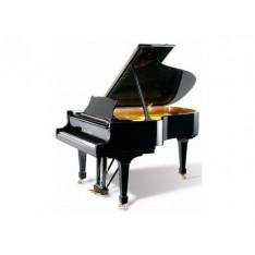 Wilh Steinberg P187 - Piano 1/4 de queue acoustique