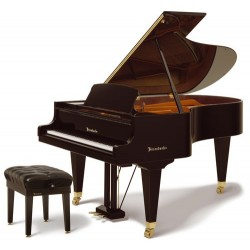 Bosendorfer 200 piano 1/2 de queue