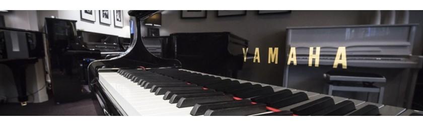 achat vente piano acoustique la maison du piano lille. Black Bedroom Furniture Sets. Home Design Ideas