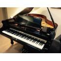 Euterpe 186  Piano 1/4 de queue