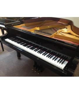 Piano 1/4 de queue Petrof P170