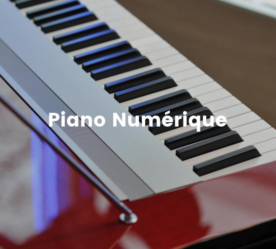 achat vente piano location piano dans votre magasin de. Black Bedroom Furniture Sets. Home Design Ideas